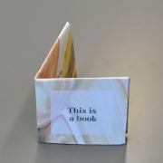 artists-book_elzbieta-upe-rozanovaite
