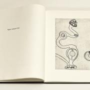 13_Karin-Hilbers_artists-book