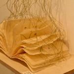 Artist's book of Toshihiro Hattori
