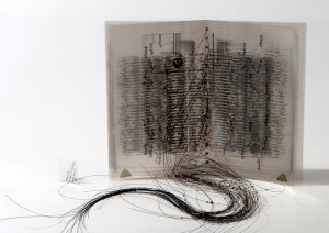 Artists-Book_Claire-Jeanine-Satin_USA_2011-1