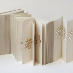 19_Artists-Book-Triennial_Liang_Zang_China